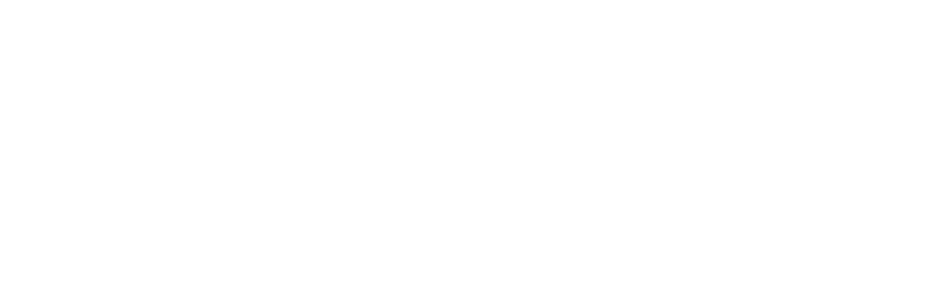 Gold coast newborn photography_WHITElogo